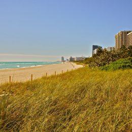 Miami Beach, der schöne, breite, weiße Sandstrand