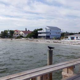 Anna Maria Island, Blick auf den Strand