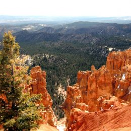 Bryce Canyon, Ponderosa Point
