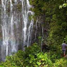 Wasserfall, Maui