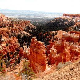 Bryce Canyon Rimtrail