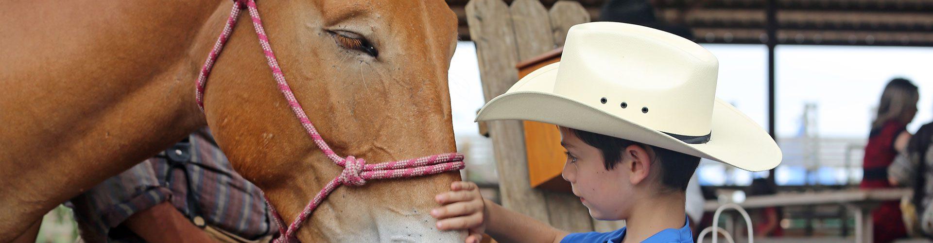 Junger Cowboy, Texas