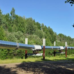 Die berühmte Transalaska Pipeline in Fairbanks