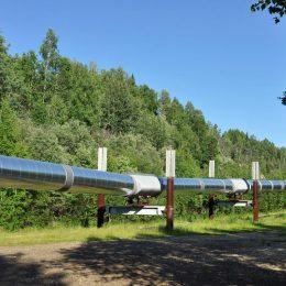 Die berühmte Transalaska Pipeline in Fairbanks