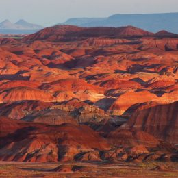 Petrified Forest NP Painted Desert