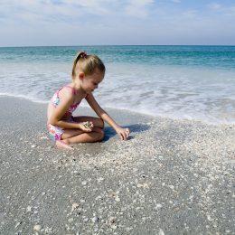Muscheln sammeln auf Sanibel Island