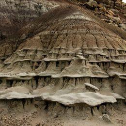 Petrified Forest NP Petroglyph Canyon