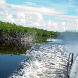 Rasante Airboatfahrt durch die Everglades