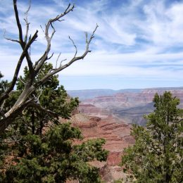 Grand Canyon bei Hermits Rest