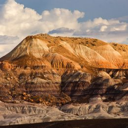 Petrified Forest NP Southern Mesa