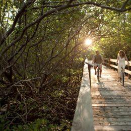 Radfahren im Lovers Key State Park, Florida