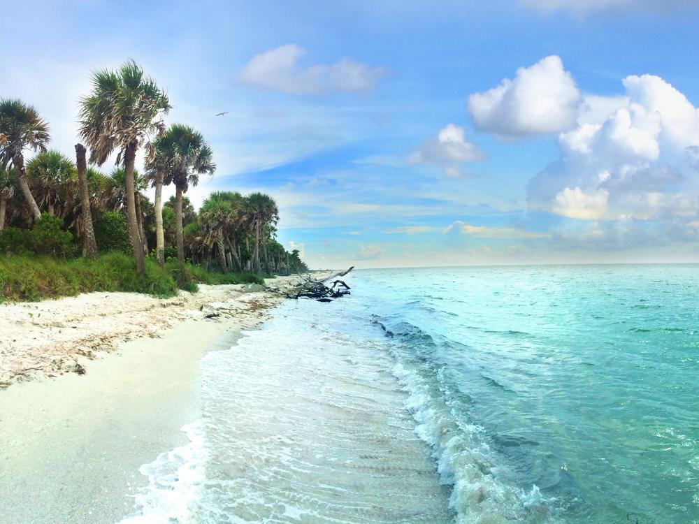 Karte Von Florida Westkuste.Fort Myers Und Sanibel Florida Ein Einzigartiges
