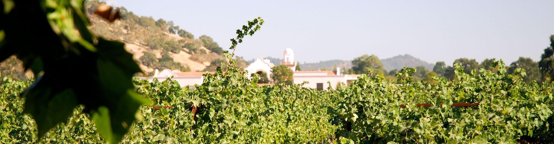 Napa Valley, Kalifornien
