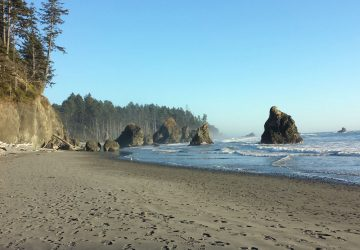 Olympic National Park: Das UNESCO-Weltnaturerbe