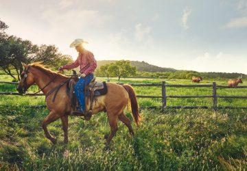 Top-Angebot: Mietwagenrundreise Texas und New Mexico