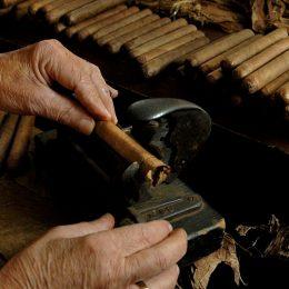 Zigarren rollen in Ybor City